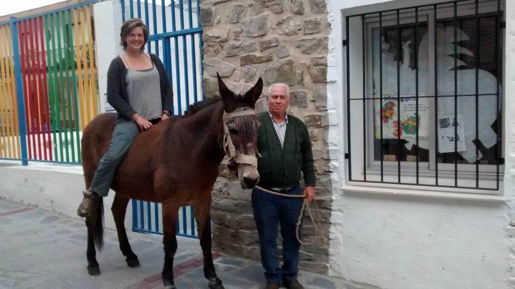 La dernière mule de Jete, Andalousie