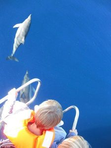 dolphins on the Costa. Sailing with them, Colina Tropical
